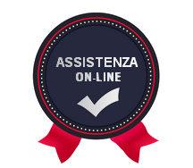 assistenza on-line
